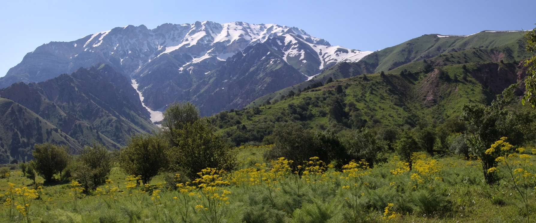 uzbekistan_nature-381